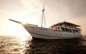 Liveaboard Banda Sea Asiaqua on Oceanic