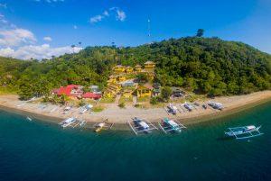 Anilao macro paradise philippines buceo anilao dive resort