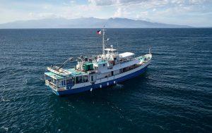 Croisière Tubbataha reef Resolute Asiaqua