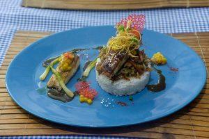 Romblon-the_three_p_food_web_073-Asiaqua