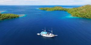 Pearl-of-Papua-Asiaqua