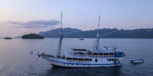 Pearl Of Papua Asiaqua